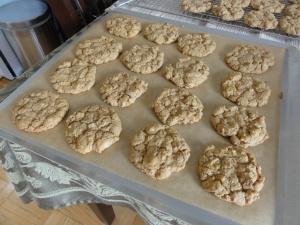 Baked maple walnut cookies