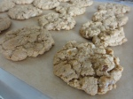 Maple walnut cookies closeup