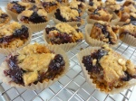 Blueberry honey oatmeal squares