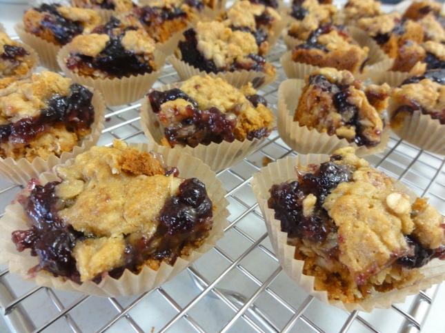 Blueberry honey oatmeal squares